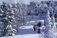 Walking in the winter wonderland (weijuan.wong) Tags: travel winter japan ropeway hida japanesealps shinhotaka