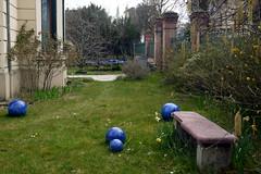 Chez les gens  Nanterre, Hauts-de-Seine, 3 avril 2016 (Stphane Bily) Tags: blue garden nanterre jardin boules hautsdeseine stphanebily
