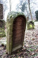 """Grab des """"wunderbar/herrlichen/reizvollen"""" Abrahams (S. Ruehlow) Tags: friedhof cemetery graveyard judentum jewish worms jewishcemetery rheinlandpfalz jüdisch מצבה jüdischerfriedhof heiligersand mazewa"""