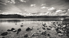 Lake Tranquil (I C O N E L L) Tags: blackandwhite bw lake nature contrast forest canon landscape outdoors boat flickr australia environment 2015 canon5dmiii 5dmiii