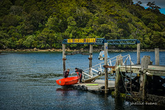 Ulva Island Ferry- Stewart Island (flyingkiwigirl) Tags: blue bird ferry island penguin golden bay office tour post native stewart kiwi ulva