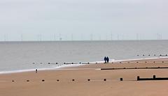 Essex Sunshine Coast! (RiverCrouchWalker) Tags: coast essex frintononsea essexsunshinecoast groynes sand beach people dog dogwalkers sea gunfleetsandsoffshorewindfarm thamesestuary windturbines windfarm spring 2016 march countyofessex