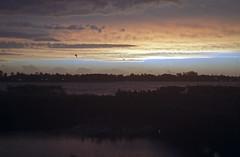 New Day; Old Camera & Lens (Kiev II) (PositiveAboutNegatives) Tags: sunrise 50mm dawn florida fil rangefinder agfa daybreak firstlight jupiter8 vista200 kiev2 kievii