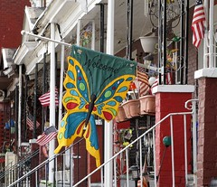 Philly 2016 Welcome Butterfly! (wheeltoyz) Tags: street city philadelphia cheese butterfly liberty hall strawberry bell pennsylvania south rocky pa pretzels philly mansion norristown steaks mantua