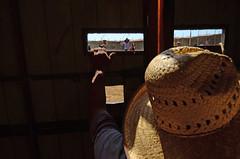 (Benoms) Tags: cowboys mxico caballos pueblo sombrero colima rancho nak rancheros tradicin vaqueros soga plazadetoros lazar petatera lapetatera villadelvarez benoms torossitorerosno
