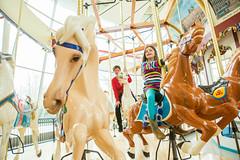 WRHS-6027 (FarFlungTravels) Tags: ohio horse history beach museum kids fun play ride cleveland carousel activity euclid merrygoround universitycircle euclidbeach