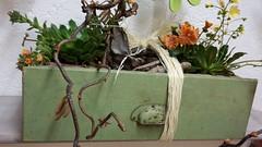 20150502_100642 (MelBa StoffKreation) Tags: blumen darmstadt melba taschen freude anhnger tpferwaren nhen kraichgau beutel einzigartig individuell schenken florales handwerkskunst riedstadt mitbringsel bestickt stoffkreation geschenkideen goddelau genhtes blumendesign prsente handgemachtes genhte handgemachteseifen badezustzeundpflegeartikelderpapayaseifenmanufaktur handgefertigteglckwunschkarten aquarellkarten