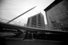 City Link (sfryers) Tags: bridge santiago tower ex monochrome architecture modern river manchester footbridge contemporary sigma pylon calatrava salford dg 1224 irwell cablestayed ultrawideangle 14556