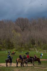 DSCF0317.jpg (Ed Traywick) Tags: horses horse leo robyn obstacles horseclinic