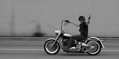 Harley Davidson, Chek Lap Kok, Hong Kong (Daryl Chapman Photography) Tags: china canon happy photography hongkong is harley motorbike ii american harleydavidson motorcycle 5d pan panning davidson sar mkiii 70200l