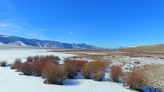 ...and the River Ran Red with Willows 2 (Dan Beland) Tags: sky usa mountain snow mountains art nature clouds landscape unmodified unitedstates artistic outdoor wildlife bluesky idaho snowcapped valley vista northamerica rockymountains bushes clearblueskies unedited slopes mountainscape drone nofilters noadjustments redwillow dji northamericanwildlife straightoffthecamera lemhimountains quadcopter phantom3professional lemhirivervalley