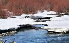 I dare you . . . (JLS Photography - Alaska) Tags: snow ice water alaska river landscape spring stream breakup jlsphotographyalaska