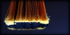 The new broom (flowrwolf) Tags: blue orange indoor inside bristles broom bristle handbroom cleaningimplement flowrwolf 116in2016 116picturesin2016 smallbroom 69cleaningimplementfor116in2016
