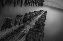 Apocalypse (John Maslow) Tags: bw monochrome marina pier newjersey apocalypse pilings fishingpier johnmaslowskiphotographyllc pierinatlanticcity