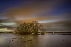 Evening Painting (AvijitNandy) Tags: cloud lake tree sweden slowshutter linköping citylight lakeroxen canon5dmarkiii canon1124f4l