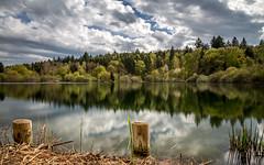 Güttinger see (Sebo23) Tags: tree forest reflections spring wolken wald baum frühling reflektionen güttingen canon6d canon24704l