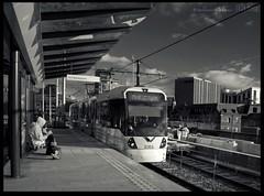 3083 at Deansgate - Castlefield (zweiblumen) Tags: uk england monochrome manchester tram publictransport metrolink polariser greatermanchester 3083 canoneos50d zweiblumen photoshopcs4 deansgatecastlefield