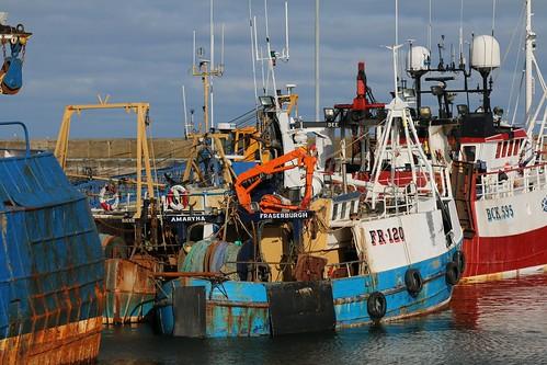 17th April 2016. Buckie Harbour, Morayshire