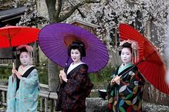 (nobuflickr) Tags: japan kyoto maiko geiko         gionhigashi gionkoubu    20160401p1040707