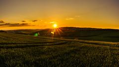 Magic Light (hiveguard) Tags: panorama sun nature field zeiss landscape sundown sony batis sonya7