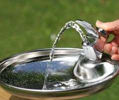 water fountains for schools (Diane Watersmart) Tags: water for office fountains schools coolers