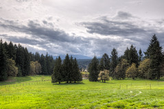Pastoral Landscape - Cedar, Vancouver Island, British Columbia, Canada (Toad Hollow Photography) Tags: trees canada mountains beautiful rural fence landscape bc britishcolumbia farm nanaimo hills vancouverisland cedar pastoral hdr bucolic