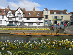 26/4/2016, 117/365, River boats IMG_5885 (tomylees) Tags: project kent canterbury tuesday april 365 26th 2016