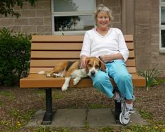 Buster_07 (AbbyB.) Tags: rescue dog pet beagle newjersey canine shelter adopt bassethound shelterpet petphotography easthanovernj mtpleasantanimalshelter