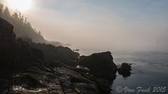 Mourning Fog (cecilstreams) Tags: fog maine bassharbor acadianationalpark rockycoastline atlanticcoastline