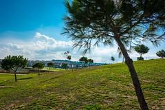 DSC_6010-4.jpg (bethaql) Tags: park parque navidad ciudad navidades torrox jerez 2015 soleado jerezdelafrontera manuelguerrero lagunadetorrox afueradejerez manuelguerrerojerez