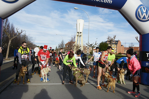 "Canina popular San Silvestre 2015 La Virgen del Camino • <a style=""font-size:0.8em;"" href=""http://www.flickr.com/photos/66442093@N08/24022968035/"" target=""_blank"">View on Flickr</a>"