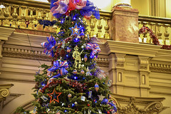 151217-Z-IM587-014 (CONG1860) Tags: usa colorado denver co veterans sacrifice heros militaryservice goldstarfamilies coloradonationalguard treeofhonor governorsownarmyband