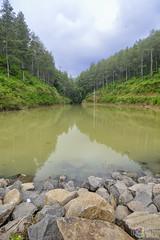 Embung Estumulyo (ul1n_nuh486) Tags: nature landscape nikon waduk alam wisata nganjuk embung sawahan explorenganjuk nikonphhotography estumulyo