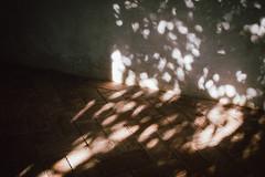 (Iris Kivisalu) Tags: travel spain valencia christmas people santaclause vacation spanish nature mountains sea children travelling sightseeing europe andalusia dali empuriabrava roses figures girona tortosa deltadebre riumar alio montblanc prades siurana vilella baixa lasmontanejos alicante gabodegata genoveses monsul san pedro jose tabiernas sierranevada lasalpujarras puertodelaragua laroles trevelez malaga ronda granada alhambra madrid ciudaddebarcelona llanca newyear festive party lights sky naturepark roadtrip barcelona