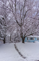 DSC01610-2 (johnjmurphyiii) Tags: winter usa snow connecticut shelly cromwell originaljpeg johnjmurphyiii 06416 sonycybershotdsch90