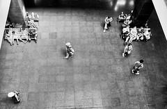 Visitors (Melvin Yue) Tags: street travel people bw blackwhite asia streetphotography wanderlust vietnam explore fujifilm blacknwhite saigon hochiminhcity bnw hcmc travelphotography travelgram instagram x100s