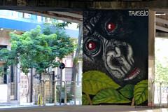 Brsil 2016 SP Graffitis-007 (CZNT Photos) Tags: streetart brasil saopaulo graff brsil artmural alaincouzinet cznt
