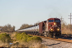 CP 9812 (gameover340) Tags: railroad train louisiana tracks oil canadianpacific cp ge oilcans gevo ac44cw es44ac oiltrain livoniasubdivision obcsj