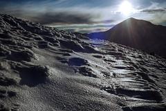 Glace sur les alpages 1 (Graphisme, Photo, et autres !) Tags: mountain snow france cold trekking path voigtlander neige chemin auvergne mul puydesancy alpinism colorskopar ultron gr4 hikking granderandonnée 40mmf14 voigtlanderr3m beautyfulllandscape