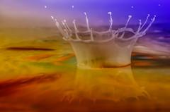 a color splash (Radijsje) Tags: color reflection drop splash