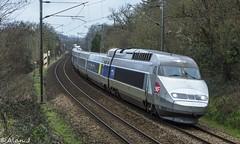 TGV Atlantique UM - Train 8722 Brest/Quimper>Paris Montparnasse (Alan Jaffr) Tags: tgv sncf atlantique