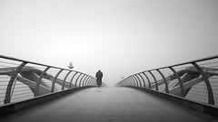 Broken Bird (vulture labs) Tags: bw bird london bike fog