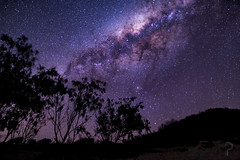 Star Chasing, Star Gazing (dualiti.net) Tags: camping sky beach beautiful night canon wow way stars fun outside happy photography nice mood different calm adventure explore nighttime astrophotography seek awe milky cosmos stargazing 6d