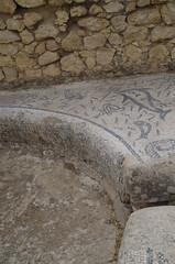 imgp3830 (Mr. Pi) Tags: pool mosaic ruin morocco volubilis archaeologicalsite