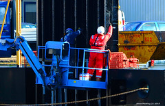 Scotland Greenock ship repair dock painters painting the car ferry Isle of Arran 16 October 2015 by Anne MacKay (Anne MacKay images of interest & wonder) Tags: car by ferry anne scotland greenock dock october ship workmen picture repair mackay 16 isle arran painters caledonian macbrayne 2015 xs1