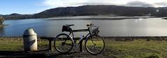 Kogswell at the lake (Franklyn W) Tags: vineyard reservoir bikeride ukiah talmage markiii porteur mendocinocounty lakemendocino 650b kogswellpr ruddickcunninghamroad