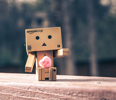 Happy Valentine's Day (7/52) (vmabney) Tags: toys heart valentinesday danbo 52weeks danboard giveusyourbestshot 522016week7
