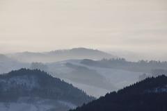 _MG_4055_50 (SteffBoe) Tags: schnee snow schwarzwald blackforest winterwonderland hornisgrinde mummelsee