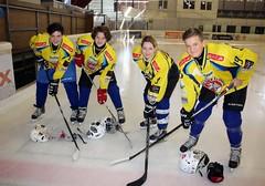 Die 4 HLW- Eiskockeyspieler