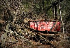 the Forgotten (Dave* Seven One) Tags: abandoned overgrown junk coke forgotten cocacola junkyard cooler refrigerator carporn drinkcoke haveacoke